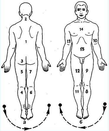 Классический массаж схема